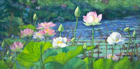 Lotus Blossoms 12x24